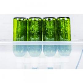 spalator sticle FastWasher 12 sticle