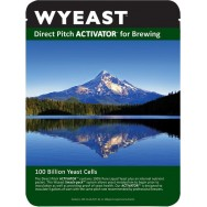 drojdie bere WYEAST XL 1084 IRISH ALE