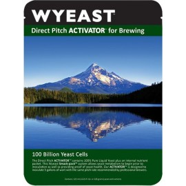 drojdie bere WYEAST XL 1728 SCOTTISH ALE